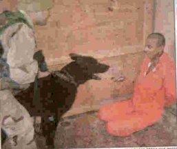 نمونه اي از شکنجه عراقي ها در زندان ابوغريب